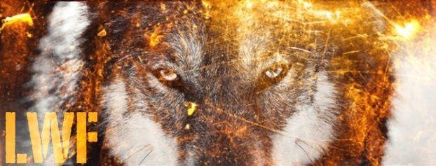 Lone Wolf Federation