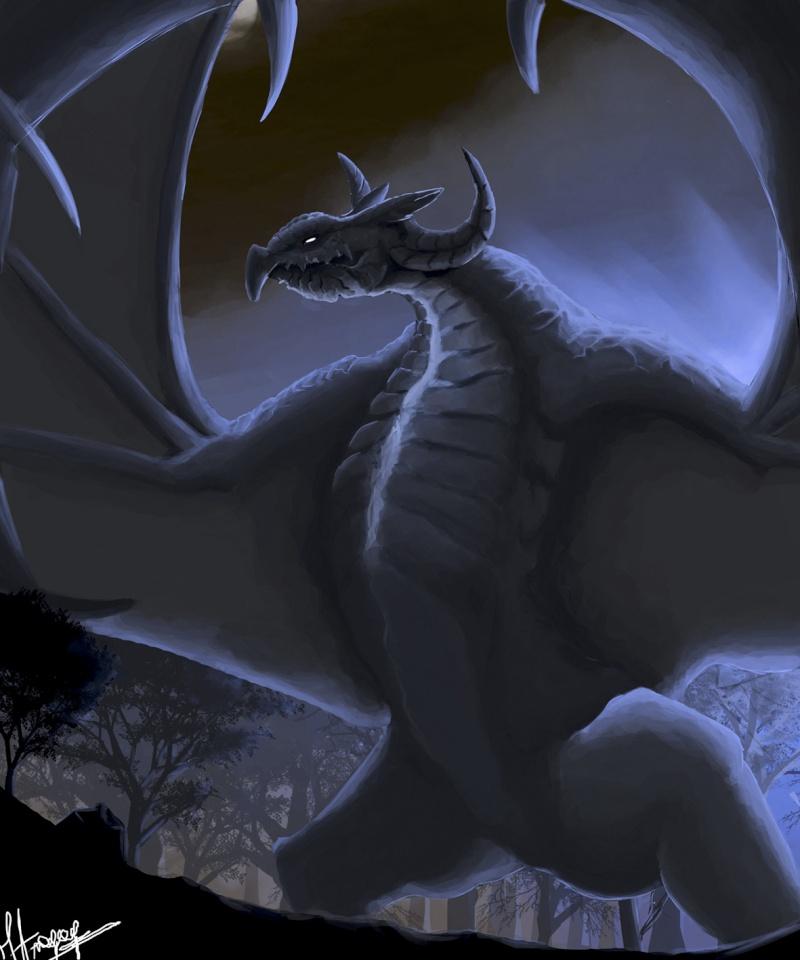 Les gribouillages d'Atna Dragon10