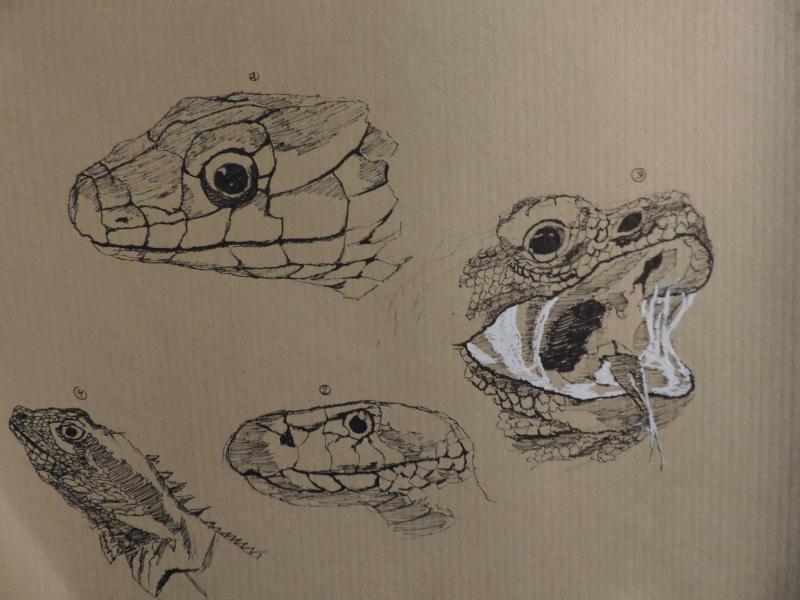 Les gribouilles d'Atna: objectif landscape et persos Dscn0411