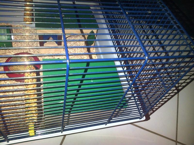 Agencement de la cage Img-2022