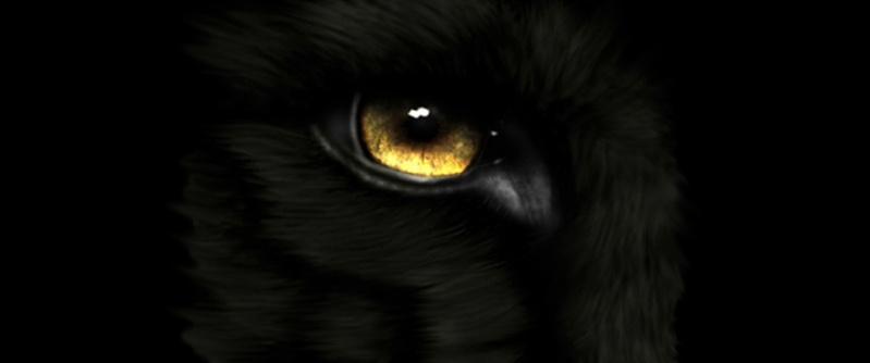 Wolfsauge