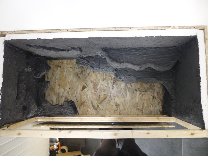 taille terrarium  et maintenance acanthurus P1010410