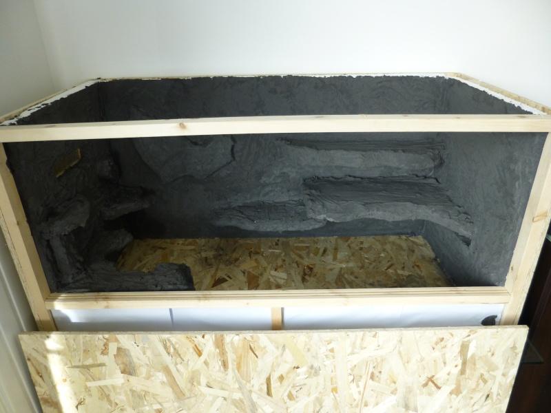taille terrarium  et maintenance acanthurus P1010411