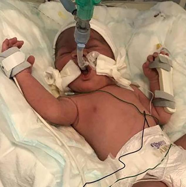 Baby saved from his dying mother's womb after pregnant mother was shot with a crossbow by her ex 0bdbb010