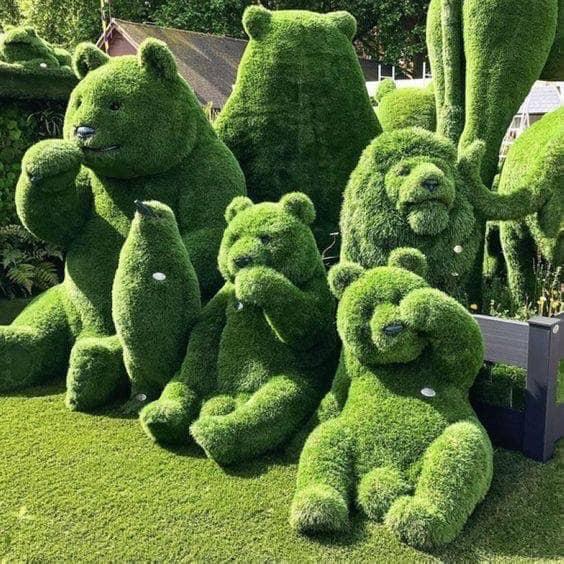 Look at my bush! 15032010