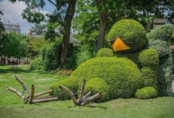 Look at my bush! Bfe09b10