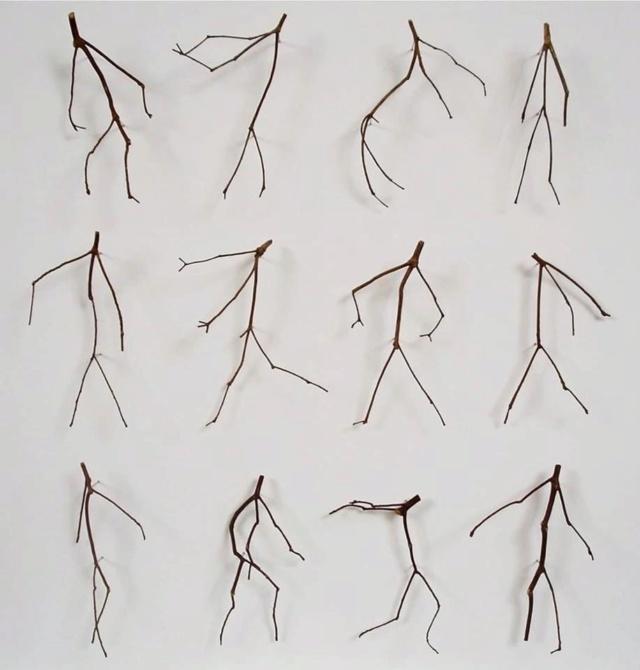 """""""Nature Dancing"""" F04bad10"""