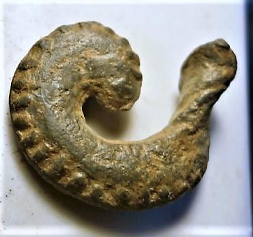 Amuleto III?? P1010319