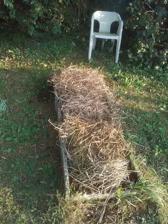 Retour d'expérience en jardin ouvrier - Page 4 Img_2012