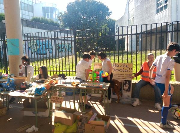 Mercadillo solidario CEIP de Prácticas de A Coruña a favor de Gatocan 21/06/2019 10_cop10