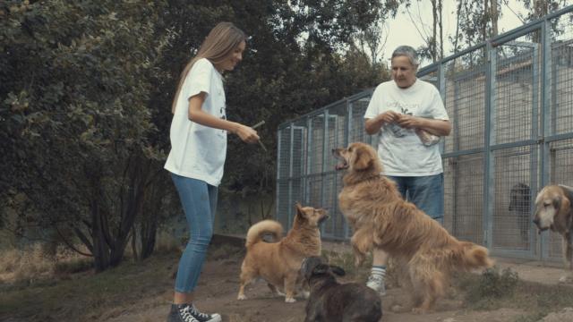 Visita de Miriam Gaute el 29/07/2019 113