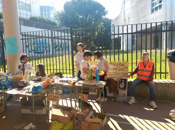 Mercadillo solidario CEIP de Prácticas de A Coruña a favor de Gatocan 21/06/2019 12_cop10