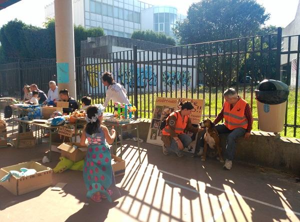 Mercadillo solidario CEIP de Prácticas de A Coruña a favor de Gatocan 21/06/2019 2_copi10