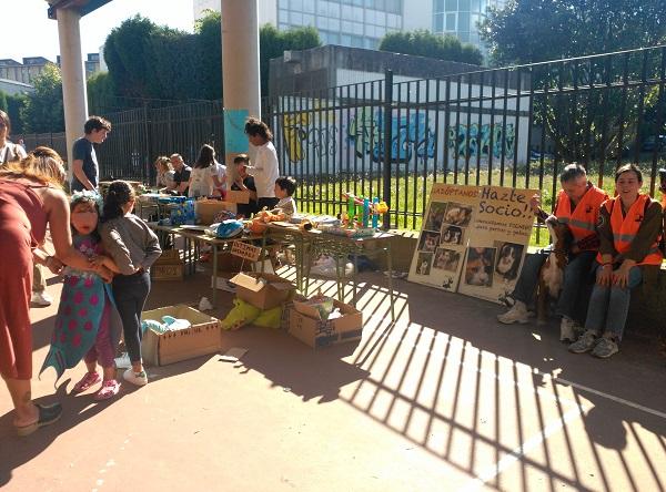 Mercadillo solidario CEIP de Prácticas de A Coruña a favor de Gatocan 21/06/2019 3_copi10