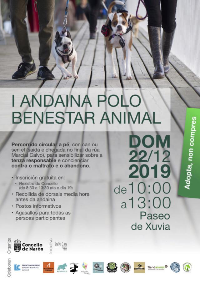 Andaina Narón 22/12/2019 I_anda12