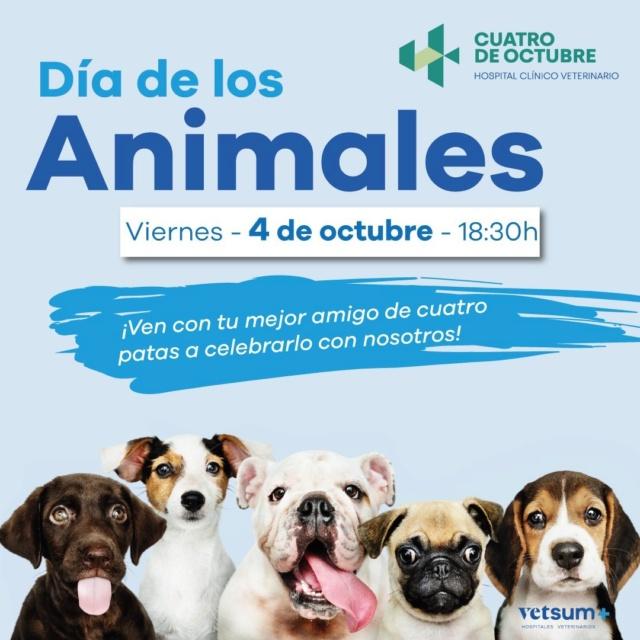 Día de la mascota en Hospital Veterinario 4 de Octubre Image113