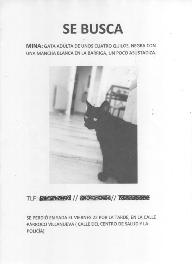 Urgentisimo: Nuestros Juancho y Mina se han perdido!! Recuperados los dos! Mina11
