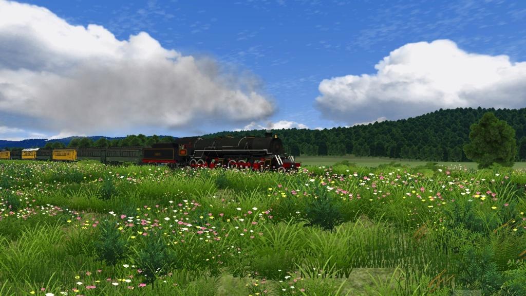 Locomotiva mallet em Lages Screen22