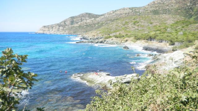 Quelques jours en Corse - Page 2 Dscn0210