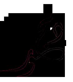 تصميم مخطوطة  Untitl10