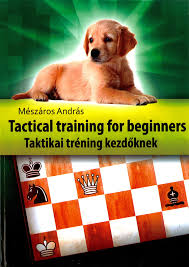Andras Meszaros Tactical Training for Beginners 34510