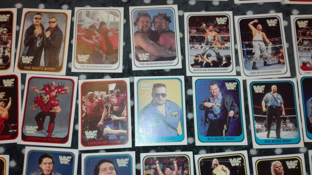 Collezione completa card wrestling merlin collection Img_2030