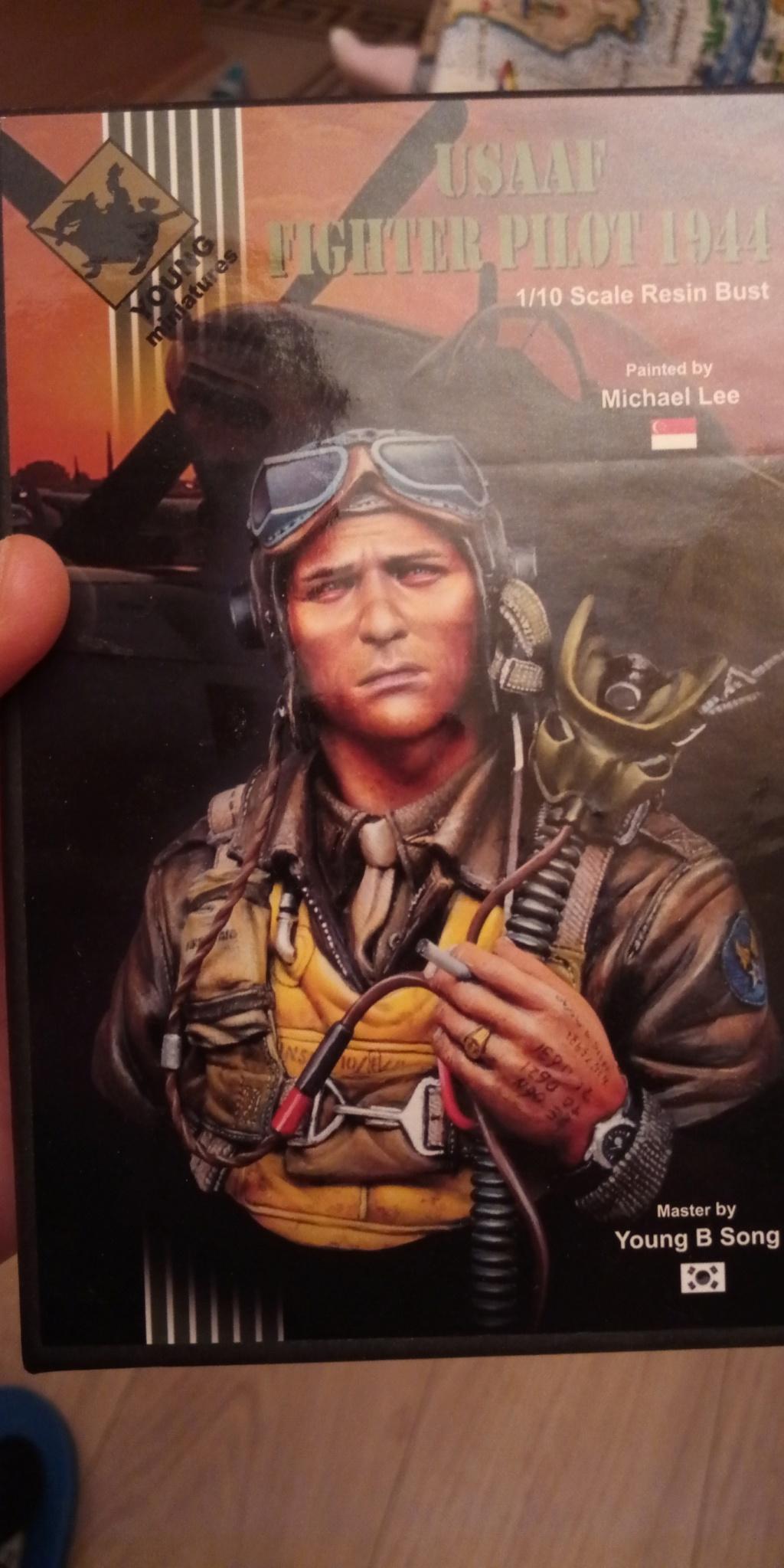 Pilote USAAF WW2- FINI P_201820