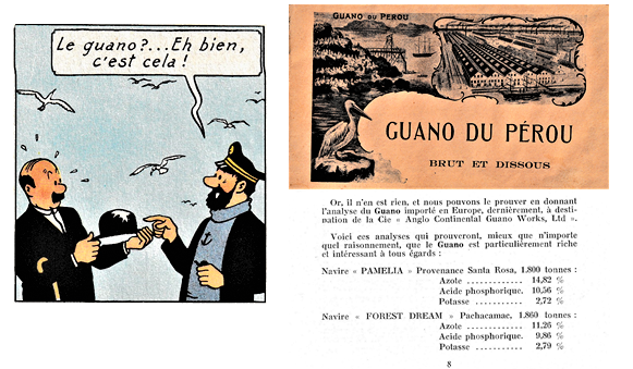 Trouvailles autour de Tintin (deuxième partie) Guano_10