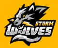 Season 3 Team Applications Swts310