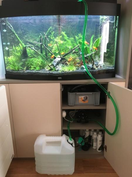 Remplissage d'aquarium pour les fainéants... 003_sy10