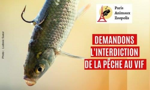 Interdictions de la pêche au vif  53613510