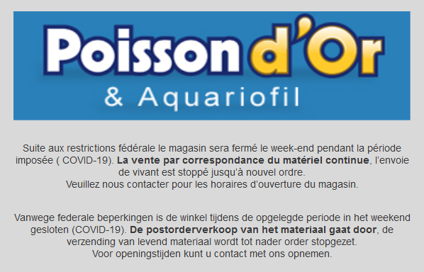 Informations poisson d'or Estaimpuis  Screen16