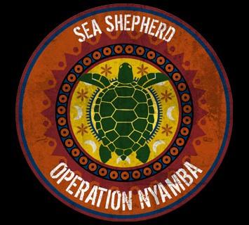 Sea Shepherd Tortue11