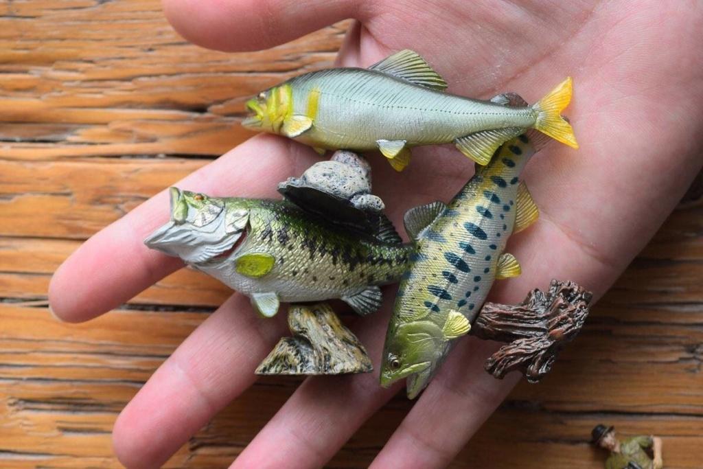 New Item of Kinto Favorite -  Aqua Fish Qqo20229