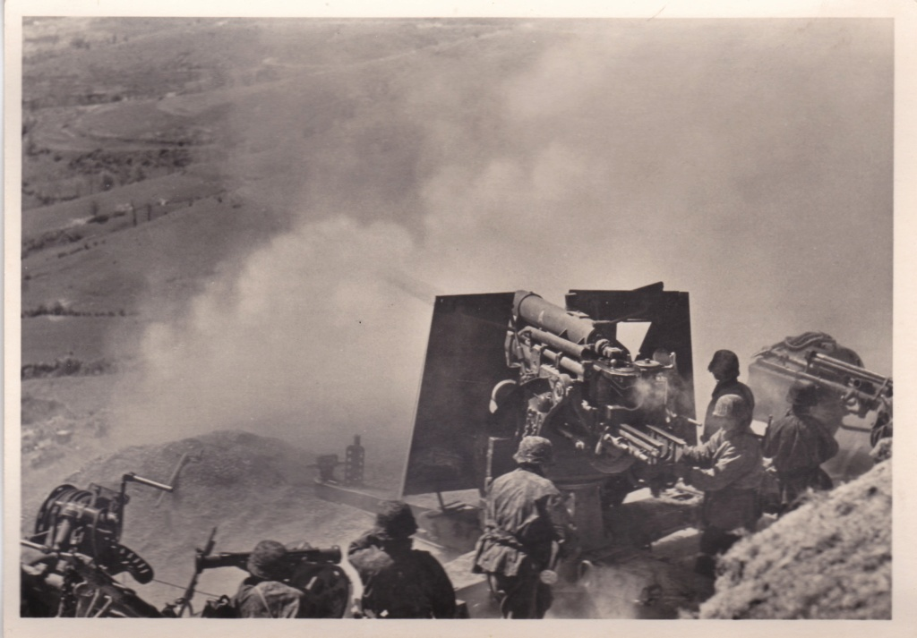 """Cartes postales """"UNSERE WAFFEN SS"""" Img_2036"""