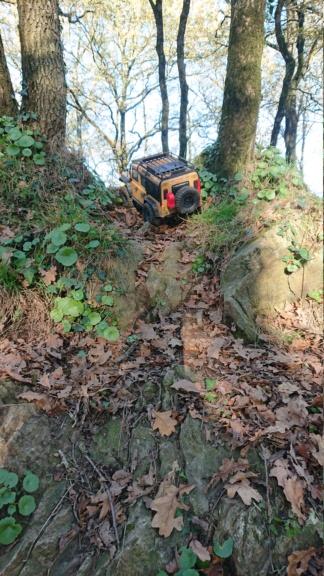 Sorties Rc Scale et Crawler tout terrain 4x4 en Loire Atlantique 44 Novembre 2020 - Page 2 Dsc_0320