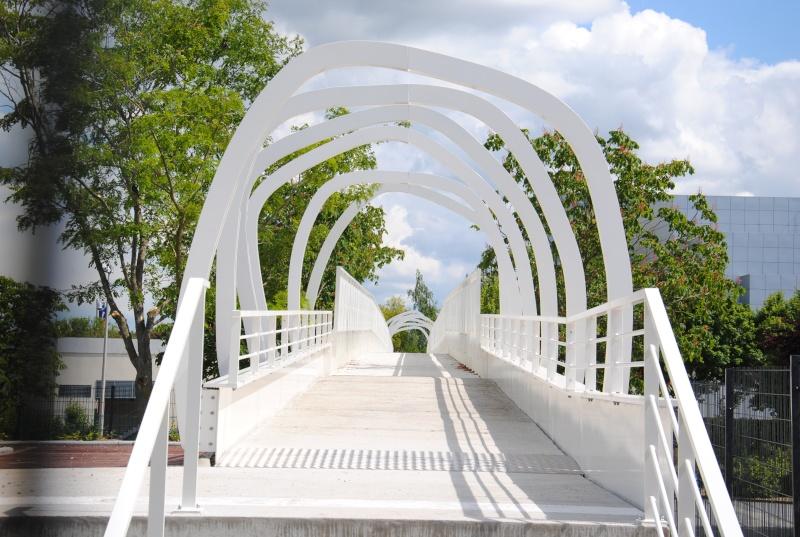 Nouvelle passerelle d'accès Parc - Hôtel du Futuroscope - Page 3 Dsc_0115