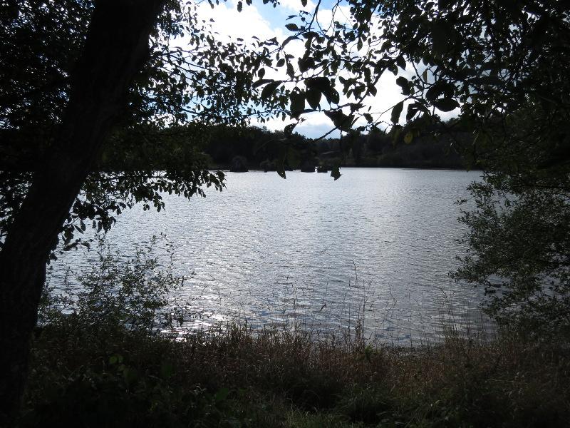 Chadka et Yocco au Lac de La Cassière 01_lac13