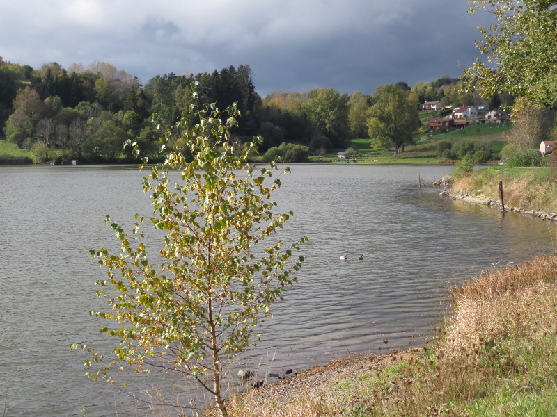 Chadka et Yocco au Lac de La Cassière 04_lac12