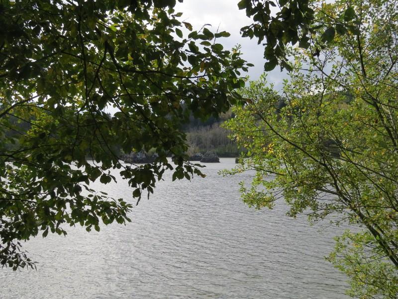 Chadka et Yocco au Lac de La Cassière 06_lac12