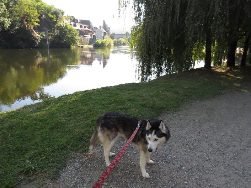 Chadka et Yocco au fil de la Dordogne 07_cha10