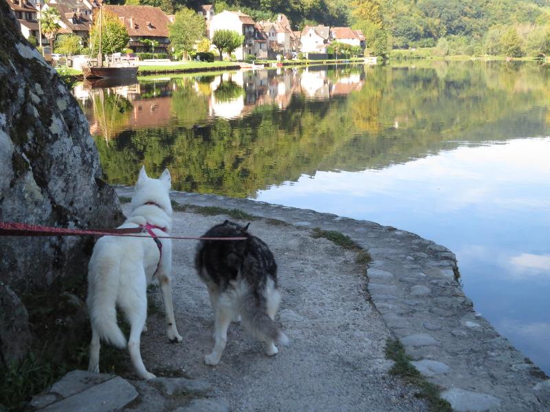 Chadka et Yocco au fil de la Dordogne 20_yoc11