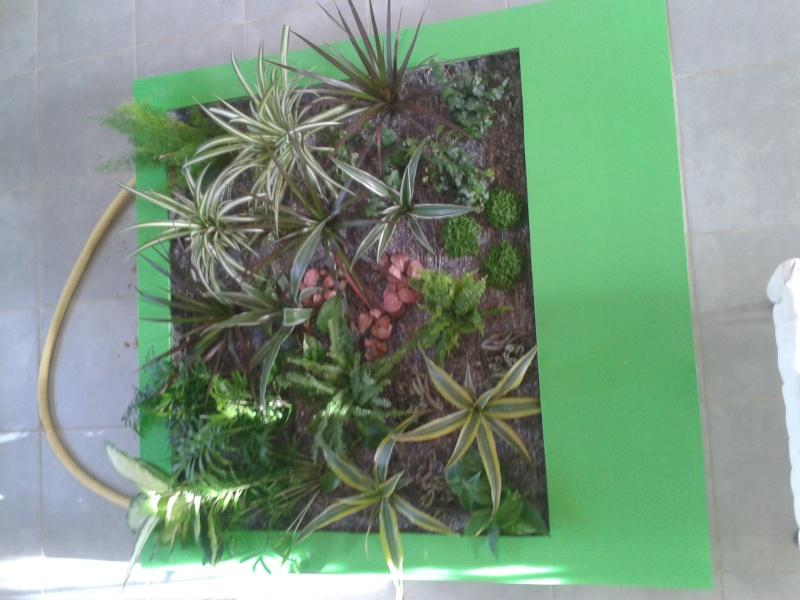 cadre végétal 2013-013