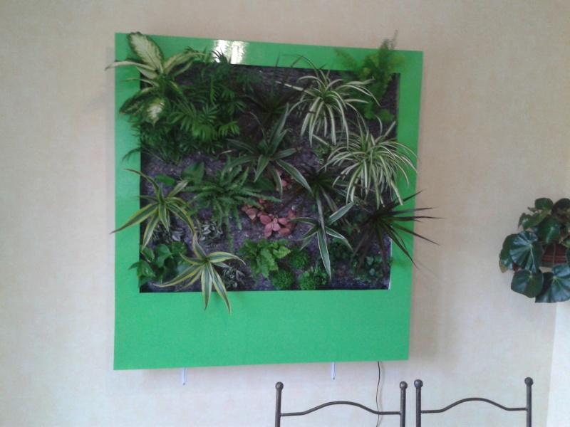 cadre végétal 2013-014