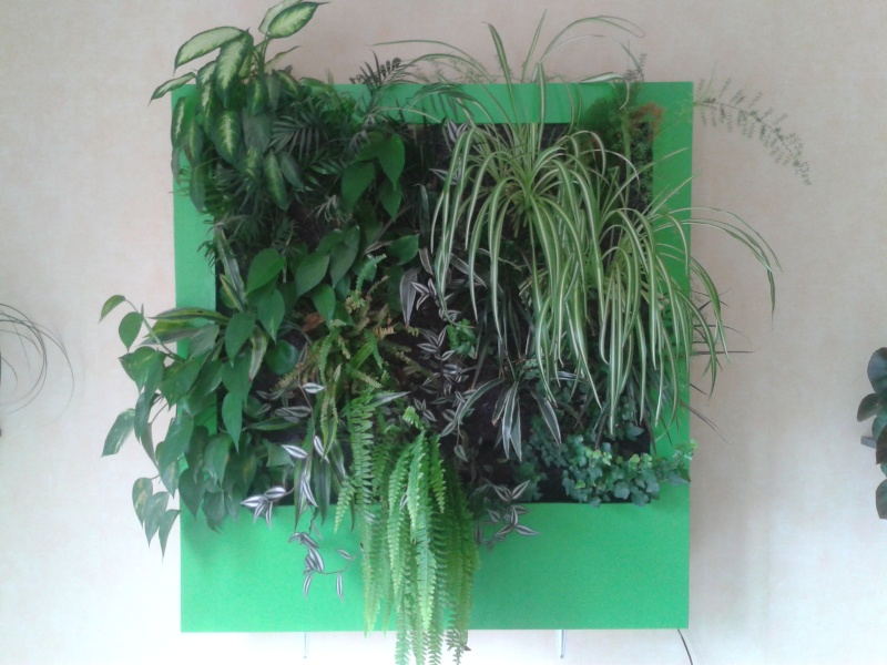 cadre végétal 2014-010