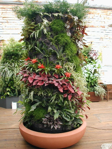 cadre végétal Colonn10