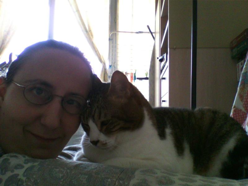 Tigrou et Mysti adopét à l'école de chat libre de Toulouse Img10513