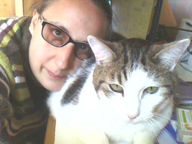Tigrou et Mysti adopét à l'école de chat libre de Toulouse Img10810