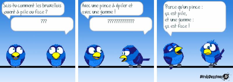 humour Image010