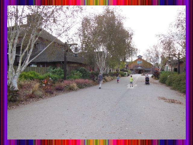 Disney's Hôtel Davy Crockett - Page 37 Villag10